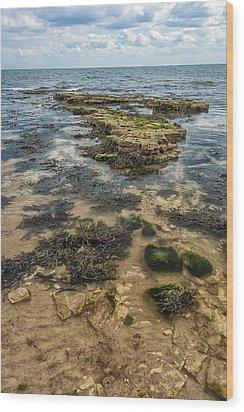 Sea Through Wood Print by Svetlana Sewell