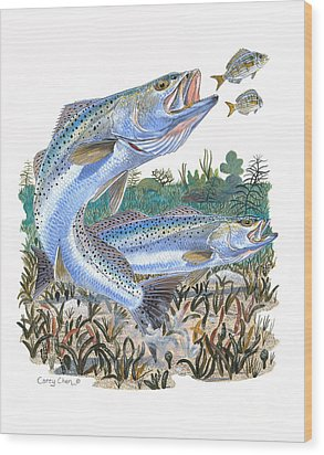 Sea Trout Wood Print by Carey Chen