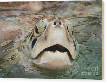Sea Turtle Poking Head Out Of Water Wood Print by Dan Friend