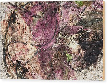 Wood Print featuring the photograph Sea Weed by Brooke T Ryan