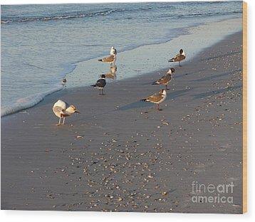 Seabirds Wood Print