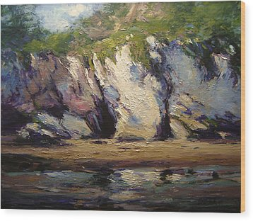 Seacaves At Pismo Beach Wood Print by R W Goetting