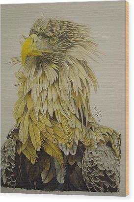 Seaeagel Wood Print by Per-erik Sjogren