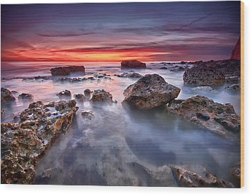 Seaford Rock Pool Wood Print by Mark Leader