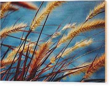 Seagrass In The Breeze Wood Print by Pamela Blizzard