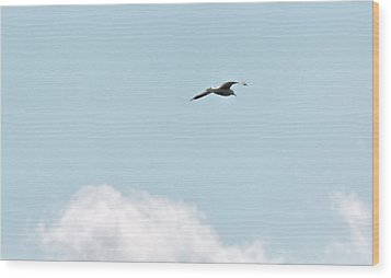 Wood Print featuring the photograph Seagull Flying High by Leif Sohlman