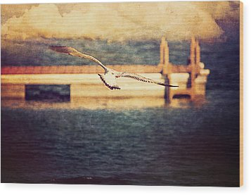 Seagull Flying Wood Print