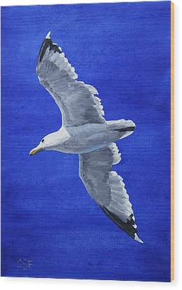 Seagull In Flight Wood Print by Crista Forest