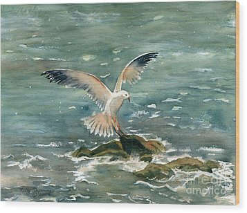 Seagull Wood Print by Melly Terpening