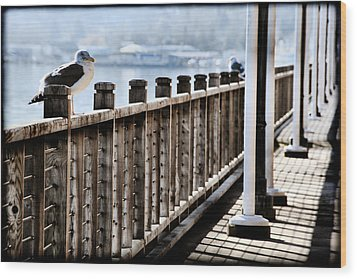 Seagull On The Boardwalk Wood Print by Sally Bauer