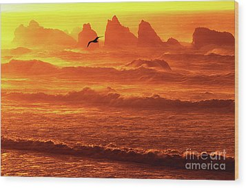 Wood Print featuring the photograph Seagull Soaring Over The Surf At Sunset Oregon Coast by Dave Welling