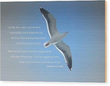 Seagull Soaring W/ Scripture Wood Print