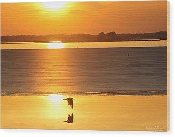 Seagull Through Sunset Wood Print