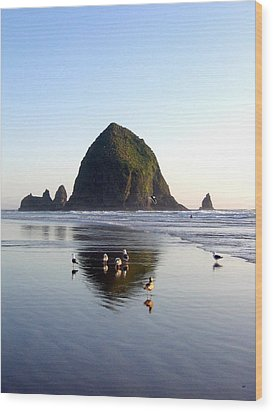 Seagulls And A Surfer Wood Print by Will Borden