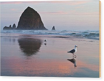 Seagulls And Haystack Rock Wood Print