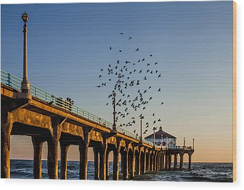 Seagulls At The Pier Wood Print