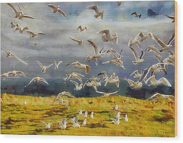 Wood Print featuring the digital art Seagulls Of Protection Island by Kai Saarto