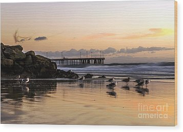 Seagulls On The Coast Wood Print by Mike Ste Marie