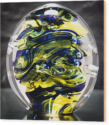 Seahawks Glass -  Solid Glass Sculpture  Wood Print by David Patterson
