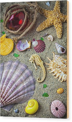 Seahorse With Many Sea Shells Wood Print by Garry Gay