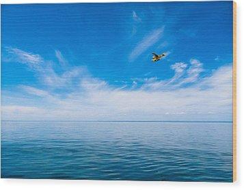 Seaplane Over Lake Superior   Wood Print