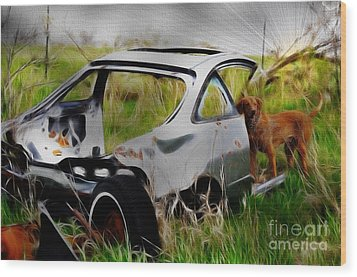 Wood Print featuring the photograph Search And Rescue by Liane Wright