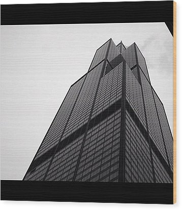 Sears Tower Wood Print