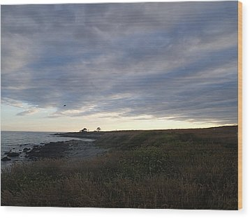 Wood Print featuring the photograph Seascape by Robert Nickologianis