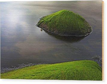 Seascape Seaweed On Rocks Wood Print by Dirk Ercken
