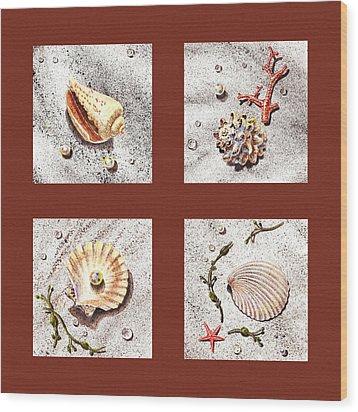 Seashell Collection Iv Wood Print by Irina Sztukowski