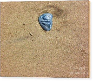 Seashell Wood Print by Venus