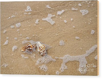Seashells And Bubbles Wood Print by Kaye Menner