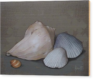 Seashells Wood Print by Clinton Hobart