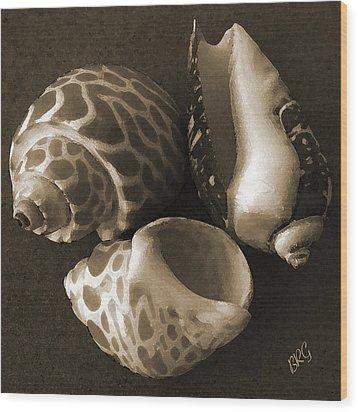 Seashells Spectacular No 1 Wood Print by Ben and Raisa Gertsberg
