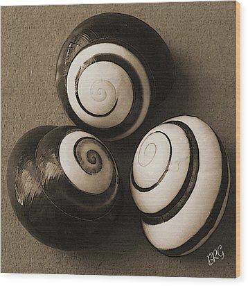 Seashells Spectacular No 28 Wood Print by Ben and Raisa Gertsberg