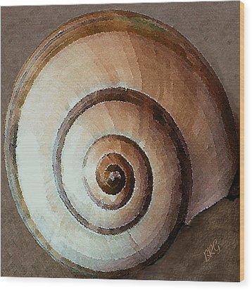 Seashells Spectacular No 34 Wood Print by Ben and Raisa Gertsberg