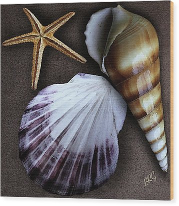 Seashells Spectacular No 37 Wood Print by Ben and Raisa Gertsberg