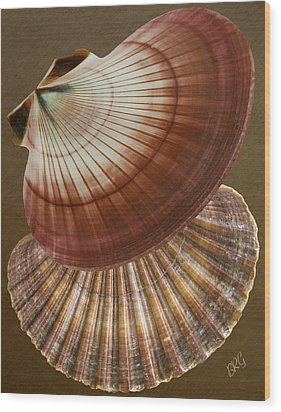 Seashells Spectacular No 53 Wood Print by Ben and Raisa Gertsberg