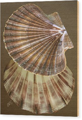 Seashells Spectacular No 54 Wood Print by Ben and Raisa Gertsberg