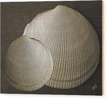 Seashells Spectacular No 8 Wood Print
