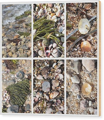 Seashore Collage Wood Print by Carol Groenen