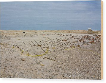 Wood Print featuring the photograph Seaside Heights...beyond The Dunes. After Hurricane Sandy by Ann Murphy