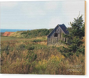 Seaside Shed - September Wood Print by RC DeWinter