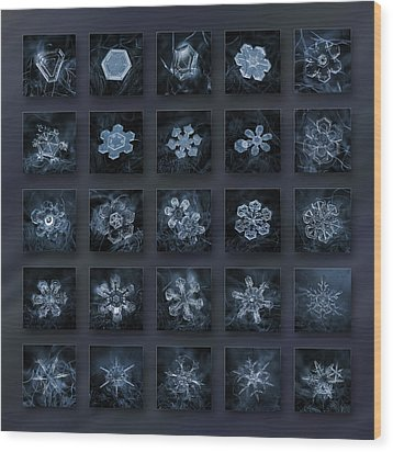 Wood Print featuring the photograph Snowflake Collage - Season 2013 Dark Crystals by Alexey Kljatov