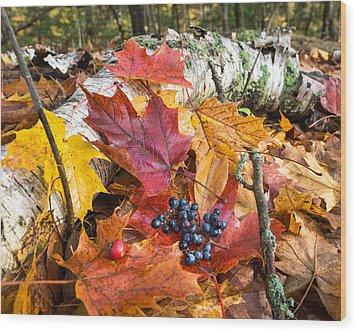 Season Finale  Wood Print by Bill Pevlor