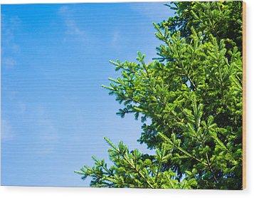 Season Greetings - Featured 3 Wood Print by Alexander Senin