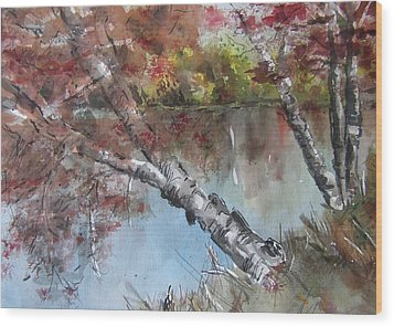 Season Of Change Wood Print by Stephanie Sodel