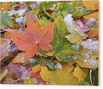 Seasonal Mix Wood Print by Rona Black