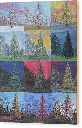 Seasons Of A Dawn Redwood - Sold Wood Print by Judith Espinoza