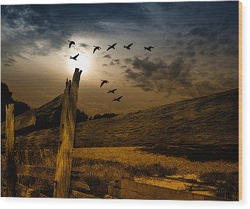 Seasons Of Change Wood Print by Bob Orsillo